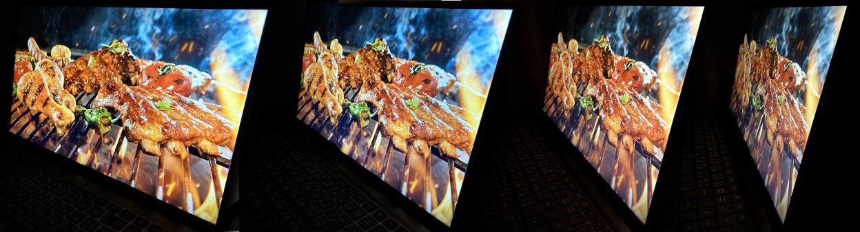 Dell Inspiron 15(5515)の視野角の確認:画像